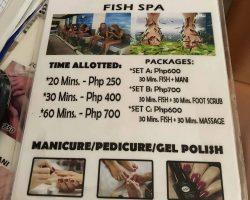鱼疗的价格表,可以和他们砍价
