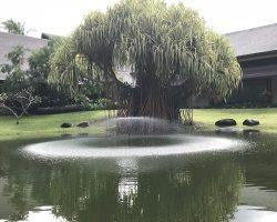 湖中心有个喷泉